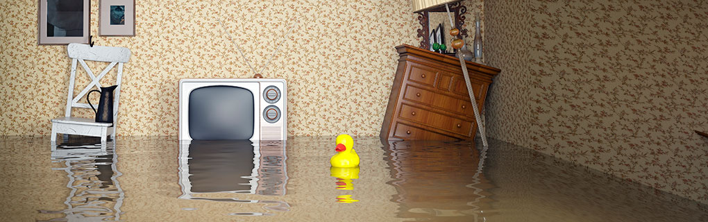 Inszone Insurance Flood Insurance Page Banner - Flooded House with Furniture