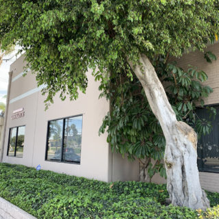 Inszone Insurance Artesia Office - Lead Image for Artesia Location